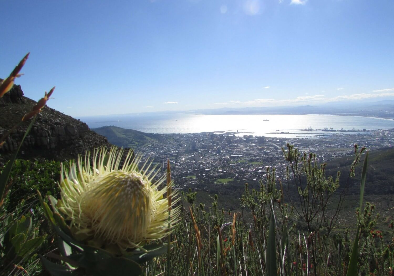 Cape_Town_Day_Trips